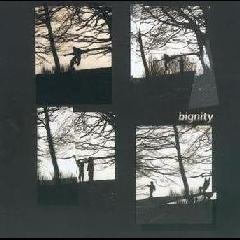 Van Der Want / Letcher - Bignity (CD)