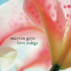 Marvin Gaye - Love Songs (CD)