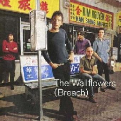 WALLFLOWERS - BREACH (CD)