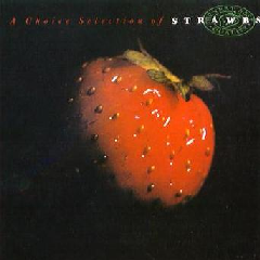 Strawbs - Choice Selection (CD)
