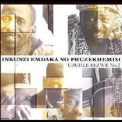 Phuzekhemisi No Nkunz' Emdakau - Ubuhle Bezwe No.2 (CD)