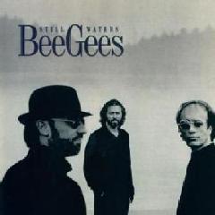 Bee Gees - Still Waters (CD)