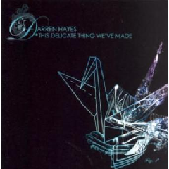 Darren Hayes - This Delicate Thing We've Made (CD)