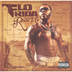 Flo Rida - Routes Of Overcoming The Struggle (CD)