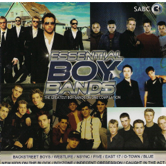 Essential Boy Bands - Various Artists (CD)