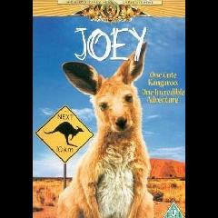 Joey - (DVD)