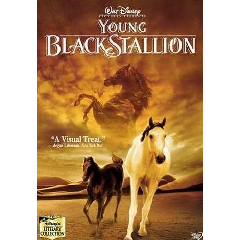 Young Black Stallion , The - (DVD)