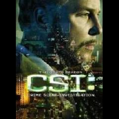 CSI Vegas: Crime Scene Investigation Complete Season 8 (DVD)