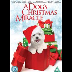 Cinnamon aka My Dog's Christmas Miracle (DVD)