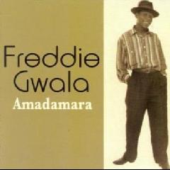 Gwala Freddie - Amadamara (CD)
