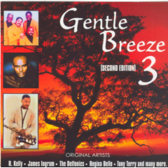 Gentle Breeze - Vol.33 - 2nd Edition - Various Artists (CD)