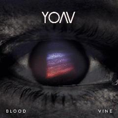 Yoav - Blood Vine (CD)