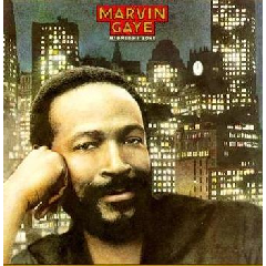Marvin Gaye - Midnight Love & The Sexual Healing (CD)