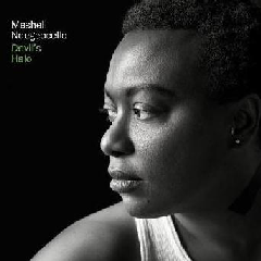 Ndegeocello, Meshell - Devil's Halo (CD)