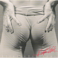 Scissor Sisters - Night Work (CD)