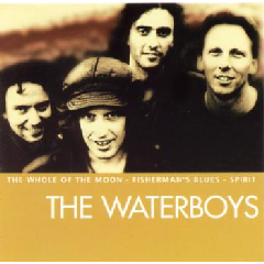 Waterboys - Essential Waterboys (CD)