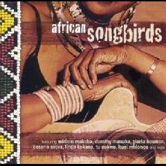 African Songbirds - Various Artists (CD)