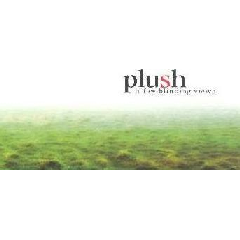 Plush - A Few Blinding Views (CD)