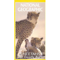 Cheetahs The Deadly Race - (DVD)