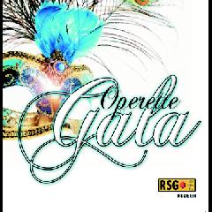 Verskeie Kunstenaars - Operette Gala