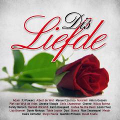 Dis Liefde - Various Artists (CD)