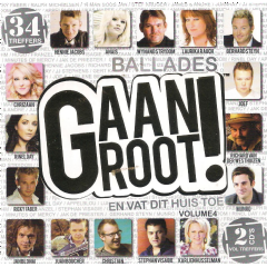 Ballades Gaan Groot - Various Artists (CD)