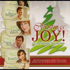 Christmas Joy - Various Artists (CD)