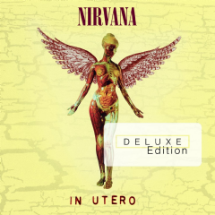 Nirvana - In Utero - 20th Anniversary (CD)