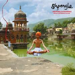 Ineffable Mysteries from Shpongleland - (Import CD)
