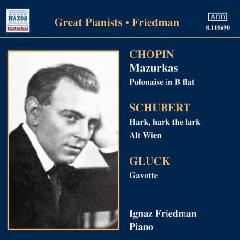 Friedman, Ignaz - Complete Recordings - Vol.3 (CD)
