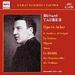 Various - Opera Arias Vol.1;Richard Tauber (CD)