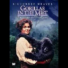 Gorillas in the Mist - (DVD)