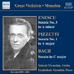 Great Violinists - Various Artists (CD)