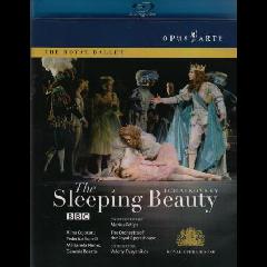 Tchaikovsky:Sleeping Beauty - (Region A Import Blu-ray Disc)