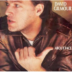 Gilmour David - About Face (CD)