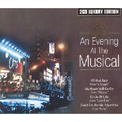 An Evening at The Musical - Various Artists (CD)