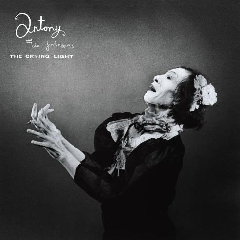 Antony & The Johnsons - The Crying Light (CD)