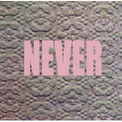 Micachu & The Shapes - Never (CD)