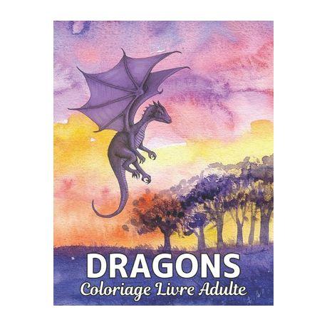Livre Coloriage Adulte Dragons Livre De Coloriage Dessins De Dragons Anti Stress 50 Dragons Unilat Raux Colorier Dessins Anti Stress Livre De Color Buy Online In South Africa Takealot Com