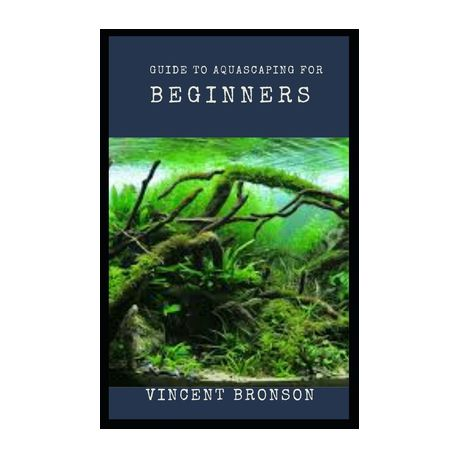 Guide To Aquascaping For Beginners Aquascaping Is To Aquariums As Gardening Is To Potted Plants Buy Online In South Africa Takealot Com