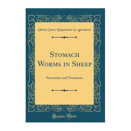 Stomach Worms in Sheep