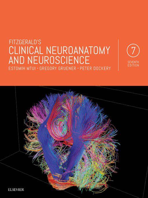 Clinical neuroanatomy blumenfeld h neuroanatomy through clinical array fitzgerald u0027s clinical neuroanatomy and neuroscience e book ebook rh takealot com fandeluxe Gallery