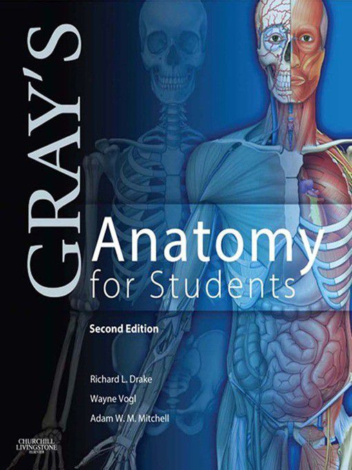 Gray\'s Anatomy For Students E-book (ebook) | Buy Online in South ...