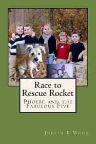 Race to Rescue Rocket