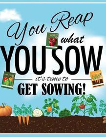 Garden Journal You Reap What You Sow Inspirational Quote Buy