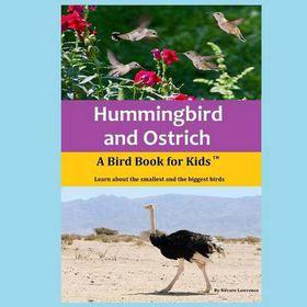 Hummingbird and Ostrich