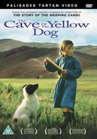 Cave of the Yellow Dog - (Import DVD)