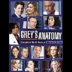Grey's Anatomy Complete Season 6 (DVD)