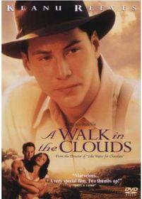A Walk In The Clouds (DVD)