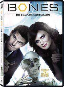 Bones Season 6 (DVD)